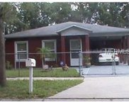8704 Fish Lake Road, Tampa image