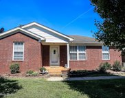 10910 Youngtown Dr, Louisville image
