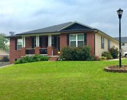 121 Eagles Crossing, Cape Girardeau image