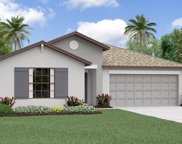 12703 Lemon Pepper Drive, Riverview image