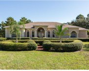 10158 Airy Oaks Court, Brooksville image