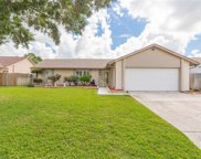 10310 Out Island Drive, Tampa image