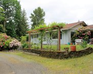 670 LOOMIS TRAIL Rd, Lynden image