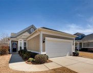 23028  Whimbrel Circle, Indian Land image