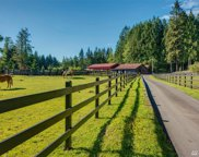 17317 OK Mill Rd, Snohomish image