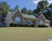 135 Pine Springs Rd, Odenville image