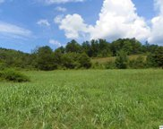 Tract# 1 Waldens Creek Road, Sevierville image