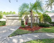 19142 Chemille Drive, Lutz image