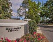 1250 Deerwood Drive, Miramar Beach image