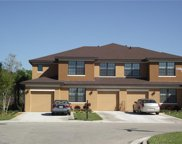 3762 Pino Vista Way, Estero image