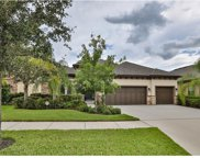 13823 Moonstone Canyon Drive, Riverview image