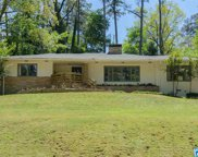 3867 Cove Dr, Mountain Brook image