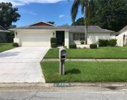 2338 Hawthorne Drive, Clearwater image