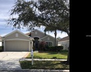 11311 Cypress Reserve Drive, Tampa image