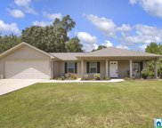 12424 Castle Ridge Cir, Mccalla image