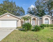 16003 Selby Way, Tampa image