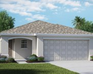 5136 White Chicory Drive, Apollo Beach image