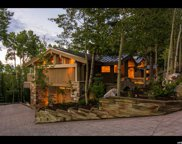 7893 Red Tail Ct, Park City image