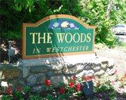 202 Woods Brooke  Court, Ossining image