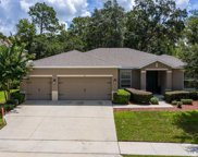 218 Wellington Woods Avenue, Deland image
