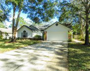 620 HUMMINGBIRD CT, St Johns image