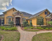 8921 Eagle Watch Drive, Riverview image