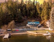 11401 N Honeymoon Bay, Newman Lake image