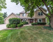 1041 Forest View Court, Naperville image