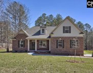 235 Hilton View Court, Chapin image