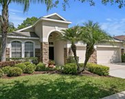 8202 Sparrow Perch Way, Tampa image