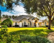 2509 Crescent Pointe Court, Windermere image