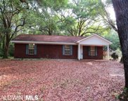 41542 County Road 112, Bay Minette image
