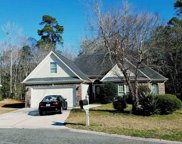 9667 Troon, Murrells Inlet image