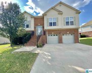 316 Waterford Cove Trl, Calera image