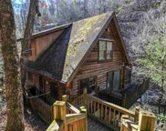 1563 Grant Rd, Sevierville image
