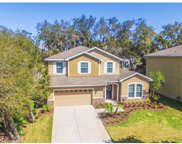 15855 Starling Water Drive, Lithia image