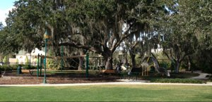 Playgrounds in Celebration Florida
