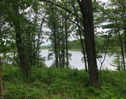 TBD Turtle Lake Drive NW, Walker image