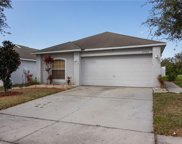 13509 Padron Court, Riverview image