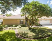9115 Canberley Drive, Tampa image
