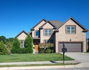 7026 Brindle Ridge Way, Spring Hill image