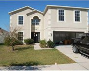 12923 Tribute Drive, Riverview image