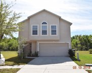 13631 Silver Charm Court, Riverview image