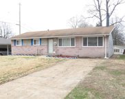 780 Herbst, Florissant image