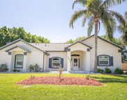 12805 Brown Bark Trail, Clermont image