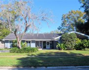 11709 Lipsey Road, Tampa image