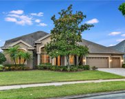 4298 Cove Drive, Palm Harbor image