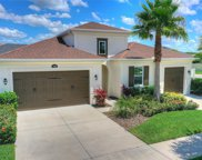 17930 Woodland View Drive, Lutz image