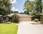 106 Myrtle Trace Drive, Conway image