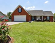 817 Misty View Drive, Maryville image